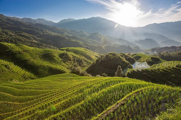 День 5 — 16 июля — рассвет на рисовых терраcах — смотровая площадка Music of Paradise