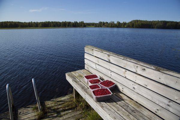 Сельский отдых в Holiday Club Hannunkivi, Финляндия