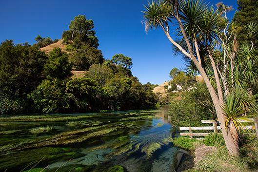 Blue Spring Putaruru, Новая Зеландия