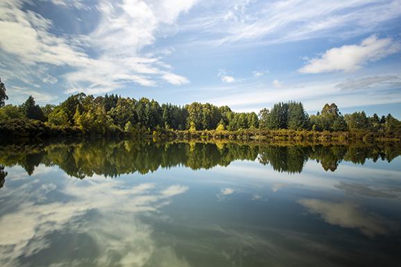 Дорога от Te Anau в сторону Milford Sound (не доезжая). Lake Henry и Mirror Lakes